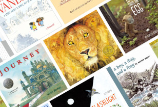 PICTURE BOOKS WITHOUT WORDS